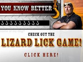 Lizard Store Banner